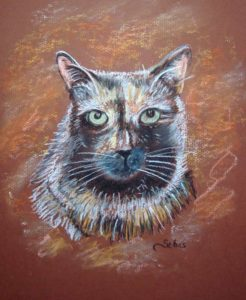 Cat portrait in pastel